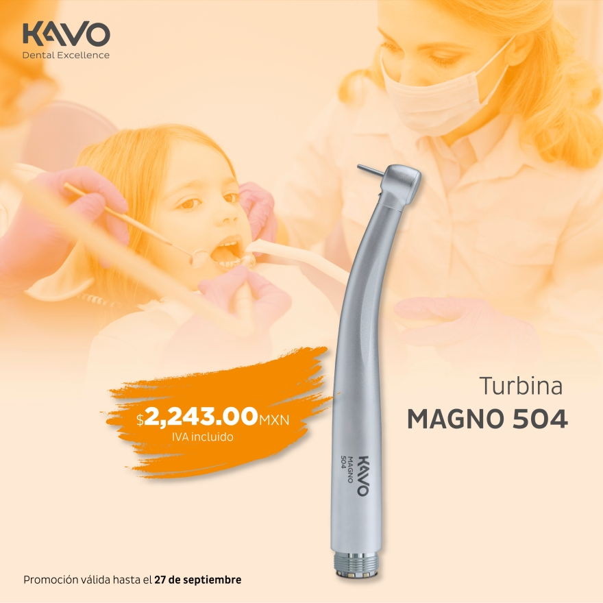 SMM_Magno504-01